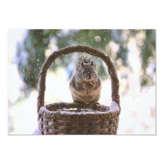 Winter Squirrel in Snow Card