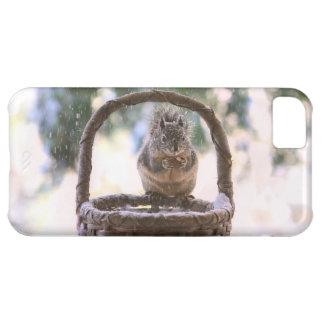 Winter Squirrel in Snow Case For iPhone 5C