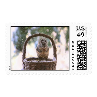 Winter Squirrel in Snow Postage