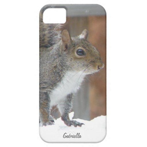 Winter Squirrel iPhone 5 Case