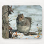 Winter Squirrel Mouse Pad