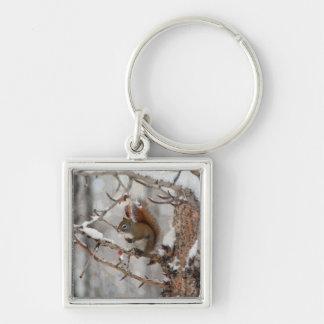 Winter Squirrel, Snow & Red Berries Xmas Design Keychain
