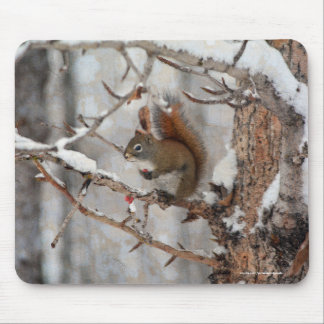 Winter Squirrel, Snow & Red Berries Xmas Design Mouse Pad