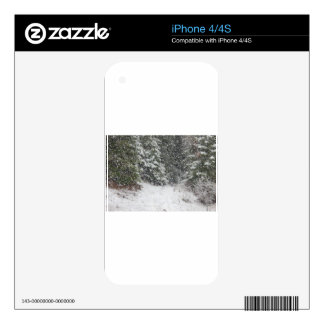 Winter Storm iPhone 4S Decal