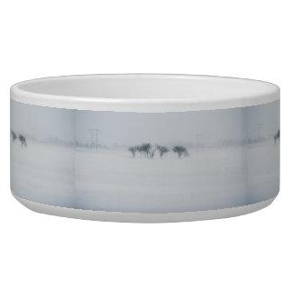Winter storm landscape dog food bowl