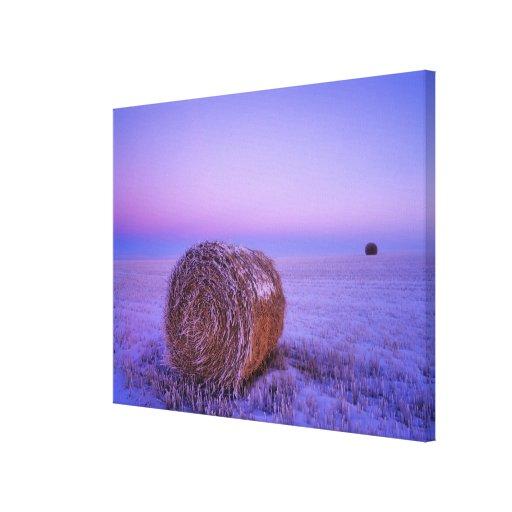 Winter Straw Bales near Cartwright North Canvas Print