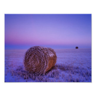 Winter Straw Bales near Cartwright North Poster