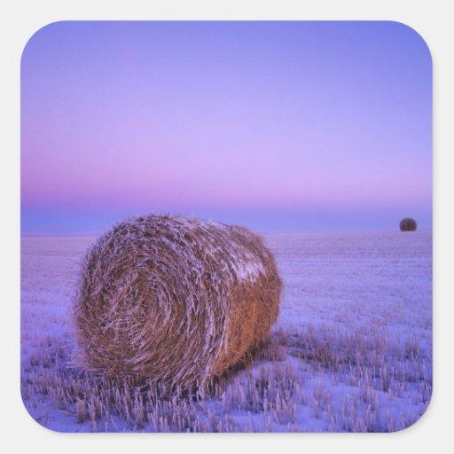 Winter Straw Bales near Cartwright North Stickers