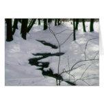 Winter Stream Cards