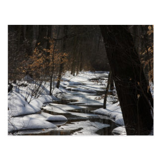 Winter Stream Postcard
