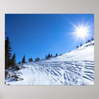 Winter sun 4 poster