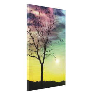 WINTER SUN AND TREE CANVAS PRINT