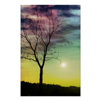 WINTER SUN AND TREE | Poster