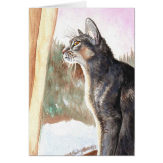 """Winter Sun"" Blue Abyssinian Card"