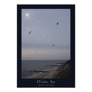 Winter Sun, Cape Cod, Massachusetts Poster