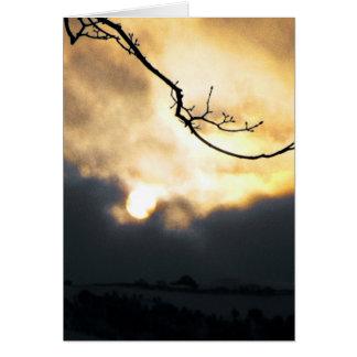 Winter Sun Card