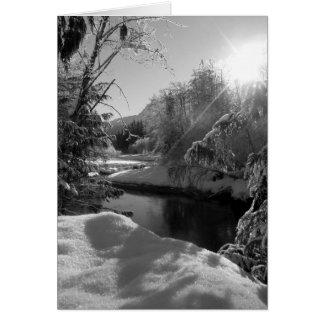 Winter Sun Note Card, Blank Inside Card