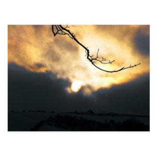 Winter Sun Postcard