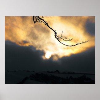 Winter Sun print