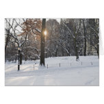 Winter Sunlight Central Park Card
