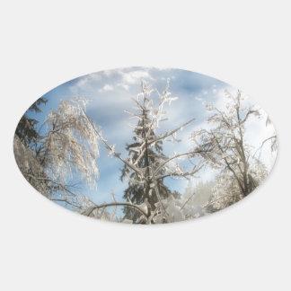 Winter sunlight oval sticker