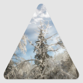 Winter sunlight triangle sticker