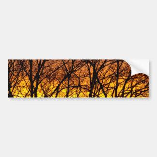 Winter Sunrise Car Bumper Sticker