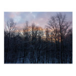 Winter Sunrise Pastel Nature Landscape Photography Postcard