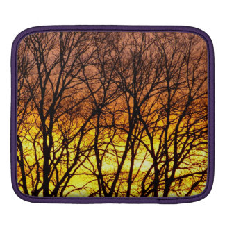 Winter Sunrise Sleeve For iPads