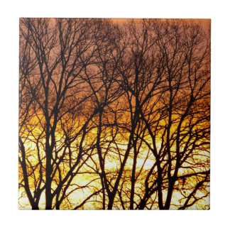 Winter Sunrise Tiles