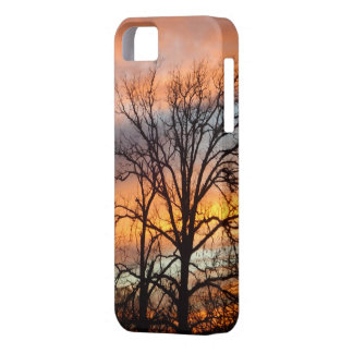 Winter Sunset 1 iPhone 5 case