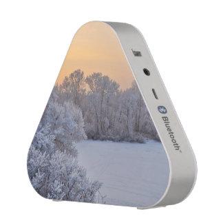 Winter sunset bluetooth speaker