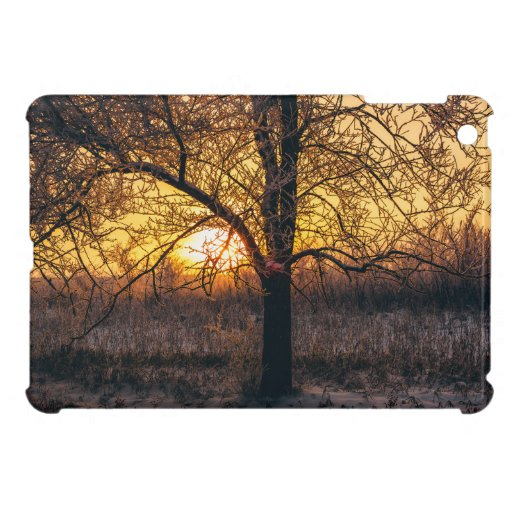 Winter sunset in forest case for the iPad mini