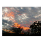 Winter Sunset Nature Landscape Photography Postcard