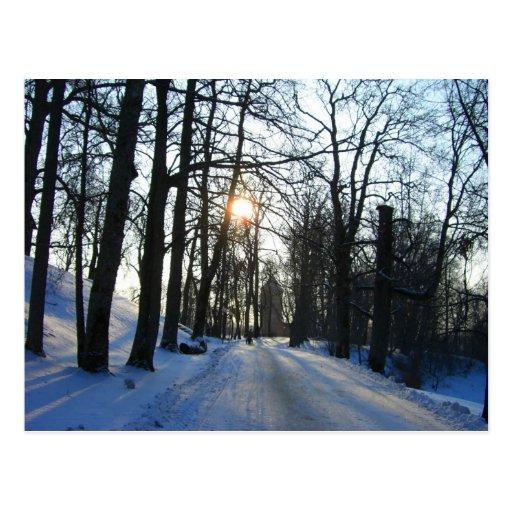 Winter Sunset- postcard