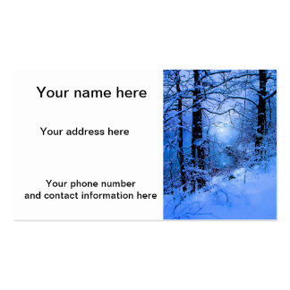 Winter Sunspot Across Lake Double-Sided Standard Business Cards (Pack Of 100)