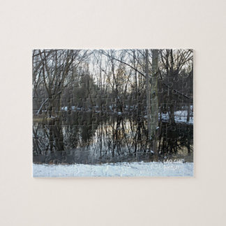Winter Swamp Jigsaw Puzzle