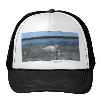 Winter Swim Trucker Hat