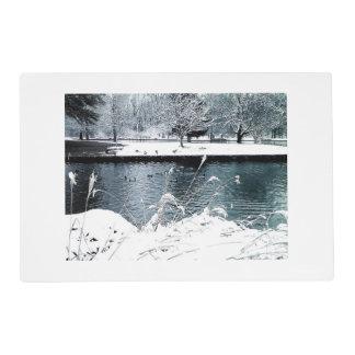Winter Swim Placemat