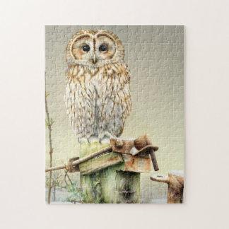 Winter tawny owl bird jigsaw puzzle