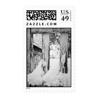 Winter Textures Stamp