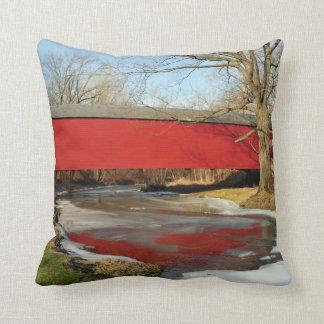Winter Thaw American MoJo Pillow