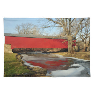 Winter Thaw American MoJo Placemat