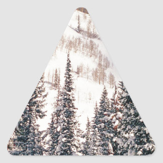 Winter The Calm Before The Storm Brighton Utah Triangle Sticker