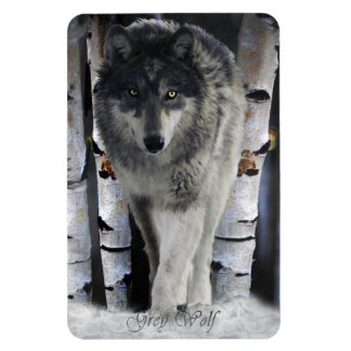 Winter Timber Wolf Wildlife Art Premium Magnet