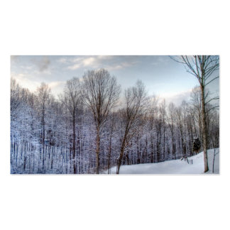 Winter time Double-Sided standard business cards (Pack of 100)