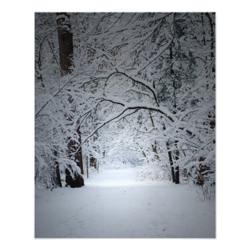 winter trail photographic print
