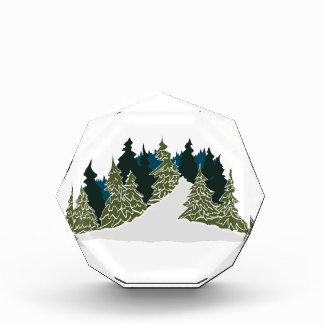 Winter Trail Scene Award