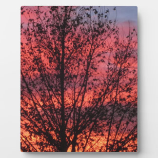 Winter Tree and Sunset Plaque