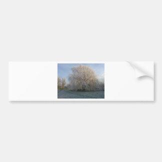 Winter Tree Bumper Sticker